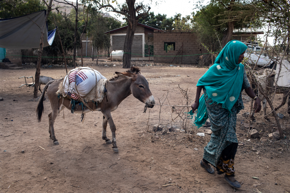 A woman uses a donkey to transport her rations of wheat from a distribution point in Ejianeni. 'For the drought-affected population, the food we provide is a lifeline. It can hold families together,' said Girma Kebede from the Hararghe Catholic Secretariat. [Will Baxter/CRS]