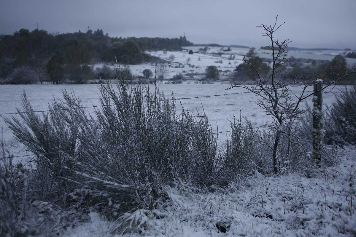A cold and, unusually for May, snowy morning in Feniers, central France. [Pascal Lachenaud/AFP]