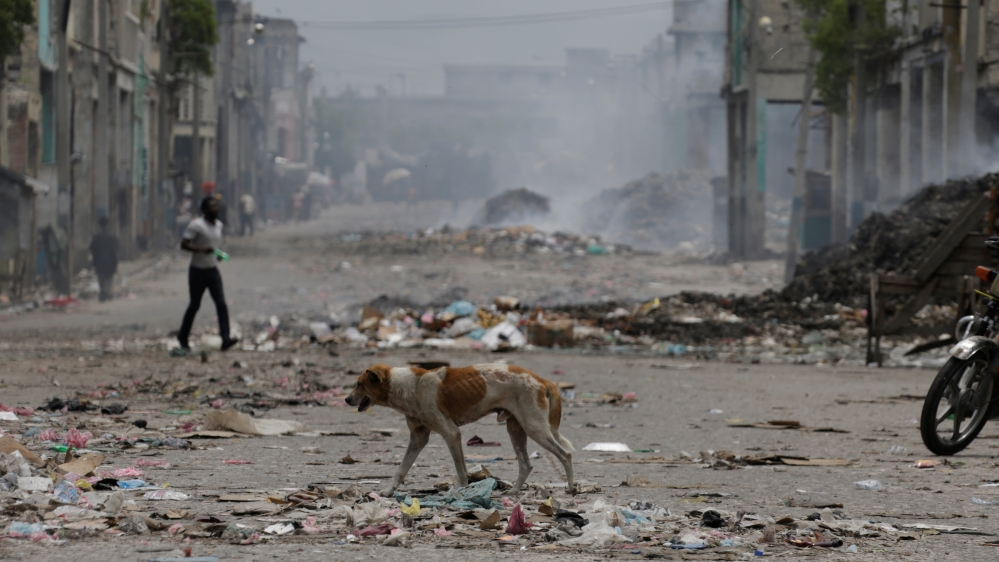 A dog walks along an empty street during a strike in Port-au-Prince