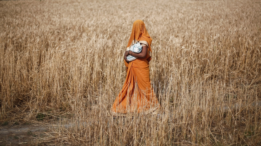 Why does India account for 37 percent of female suicides?
