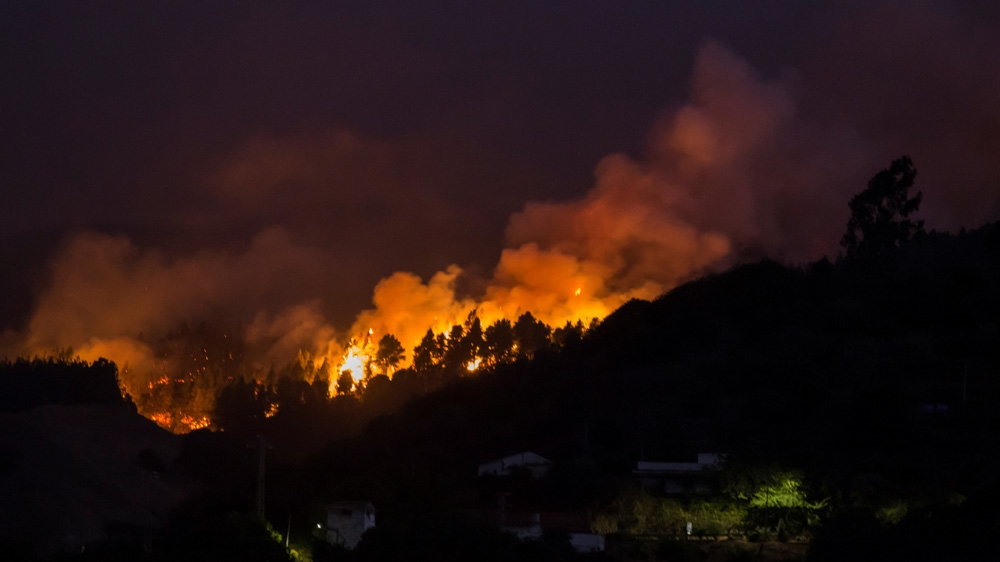 'Out-of-control' Canary Islands wildfire rages as 9,000 evacuated