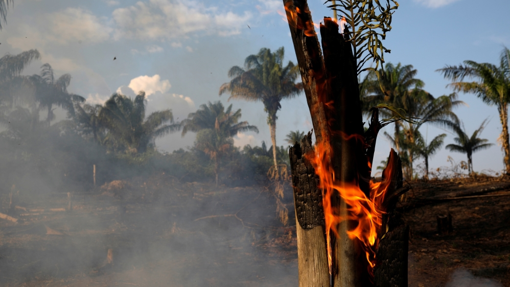Part of the Amazon jungle is burning as it is being cleared by lumberjacks and farmers in Iranduba, Amazonas State, Brazil. August 20, 2019