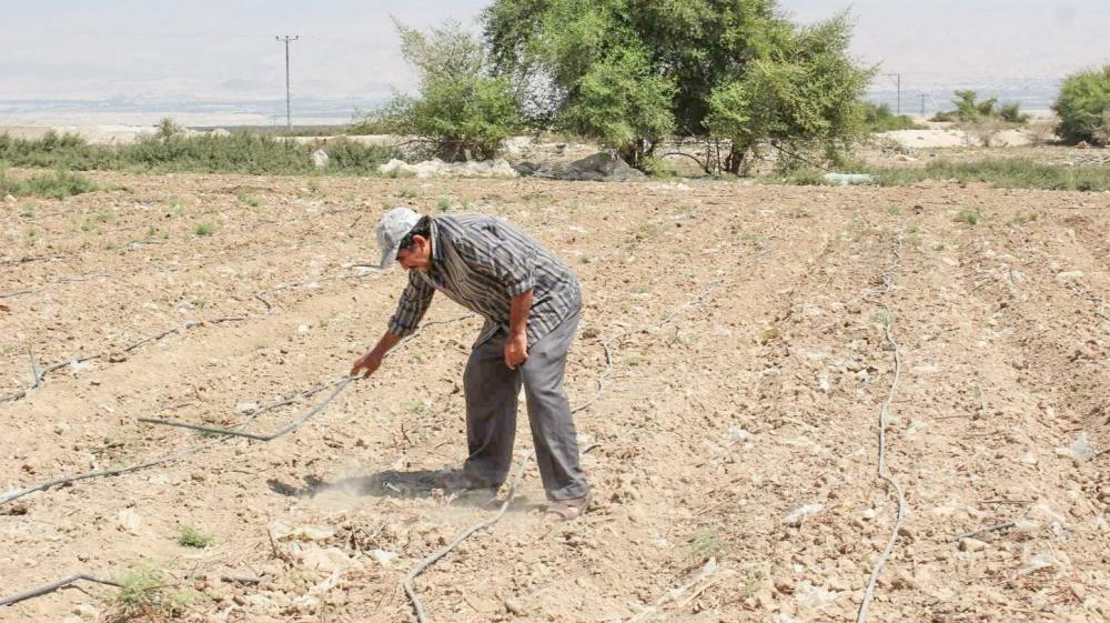 Palestinians in Jordan Valley: 'Our lands are already annexed' - Aljazeera.com