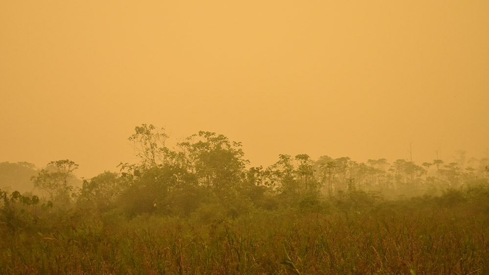 Indonesia fires