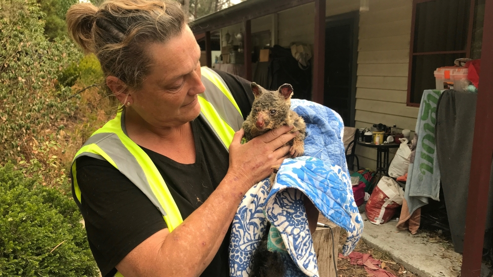 Image result for australia fire images animals