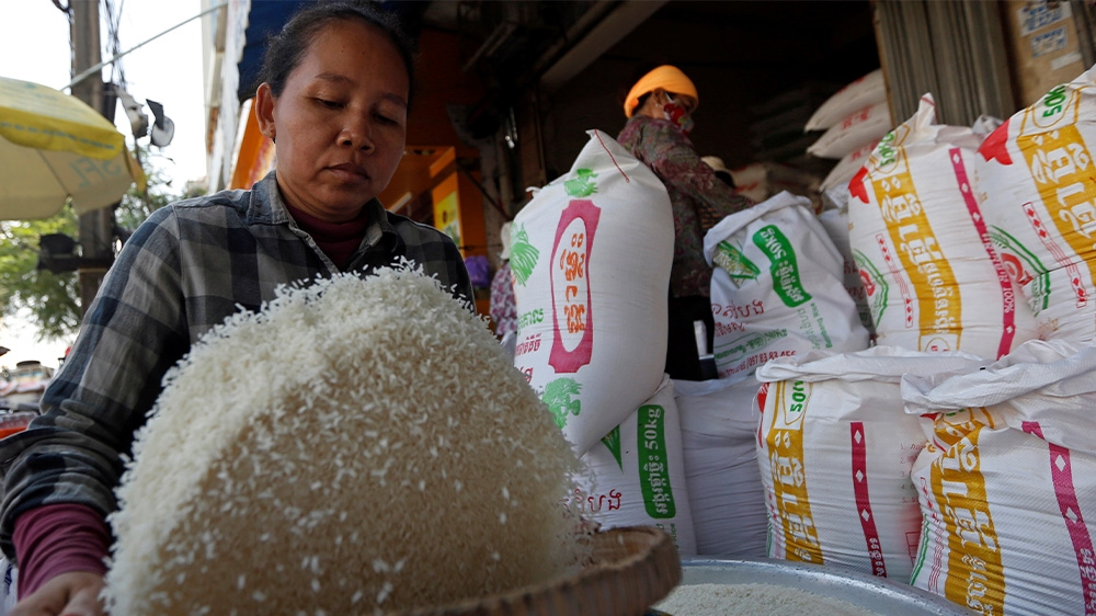Cambodia rice
