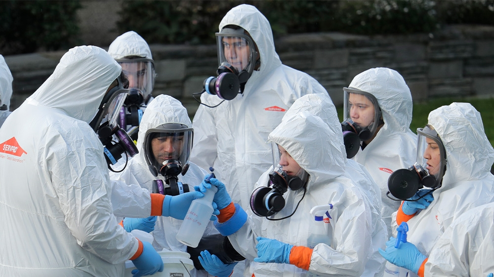 WHO declares coronavirus a global pandemic: Live updates