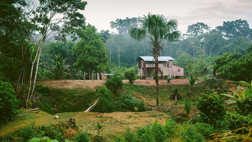 Ecuador - Amazon - Indigenous - DO NOT USE