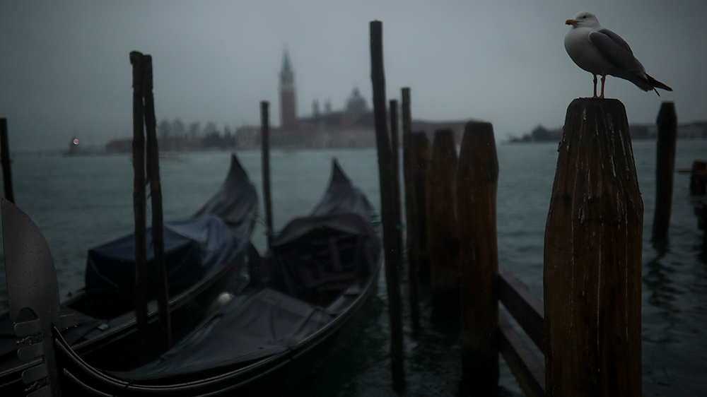 A seagull stands in a pole next to parked gondolas at the lagoon on a rainy day in Venice, Sunday, March 1, 2020. Italian tourism officials are worrying a new virus could do more damage to their indus