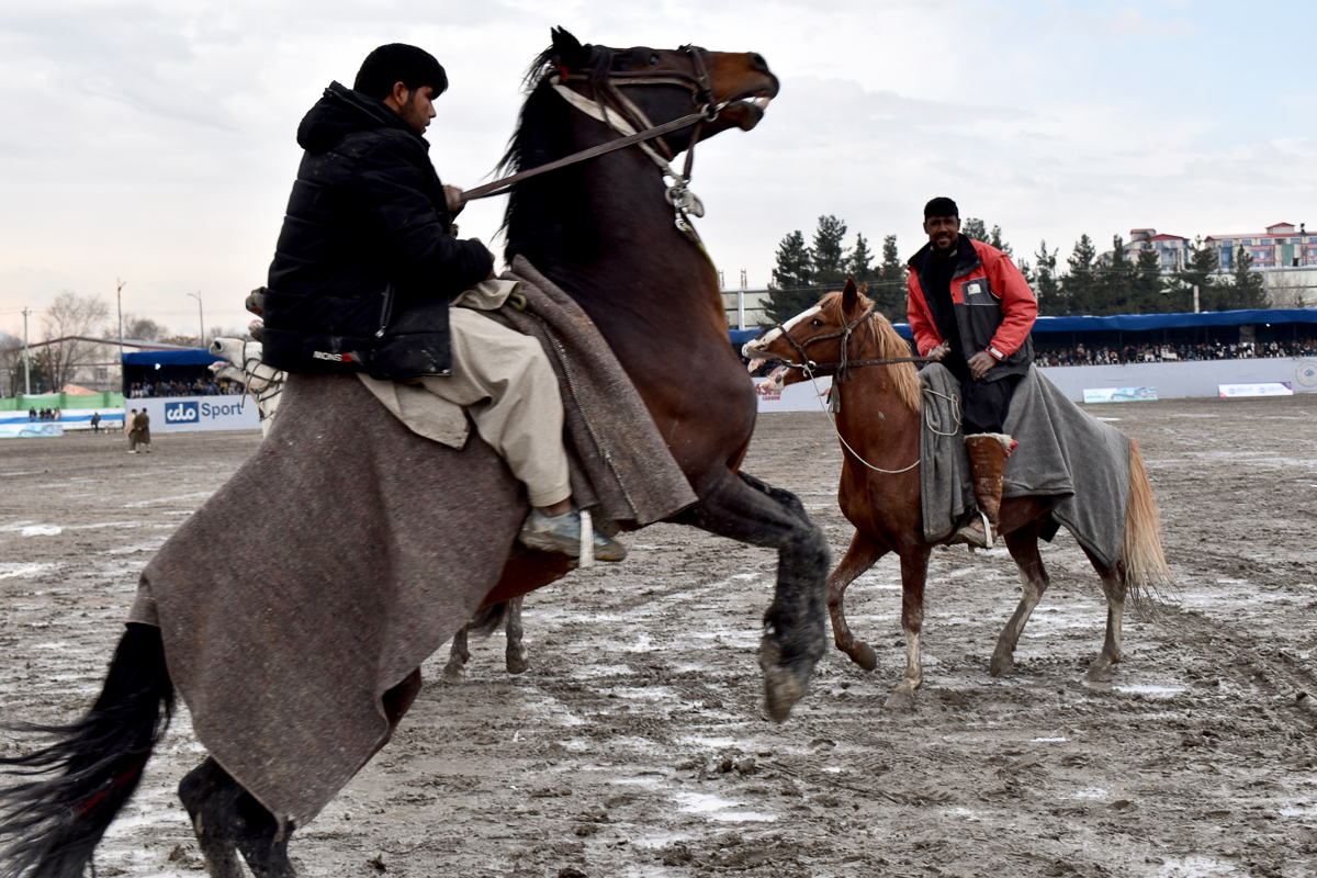 Players prepare their horses ahead of a game on the second day of the buzkashi league at Ghazi Stadium in Kabul. [Hikmat Noori/Al Jazeera]