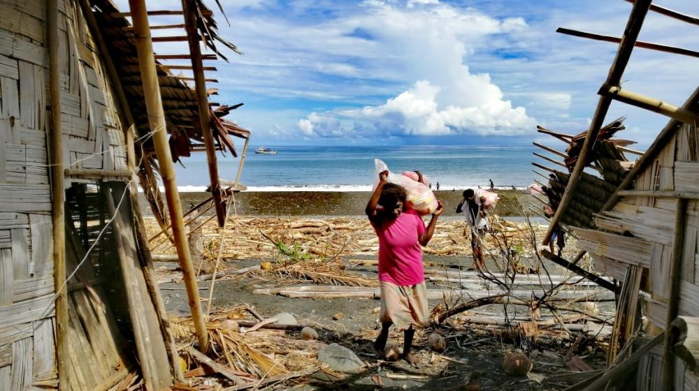 Vanuatu - Cyclone Harold - Dr. Christopher Bartlett