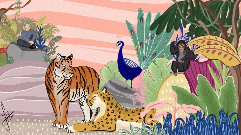 Primates, pangolin scales, leopard bones: The perils of poaching thumbnail