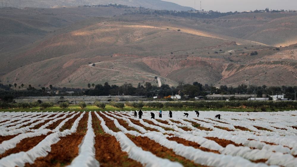 'It will likely be a catastrophe': Palestinians put together for annexation thumbnail