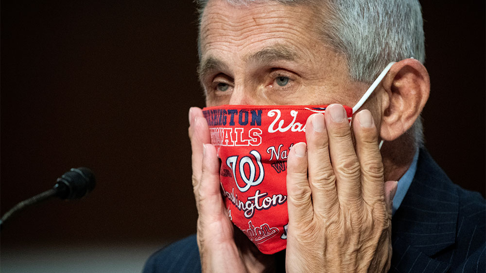Fauci Washington Nationals mask