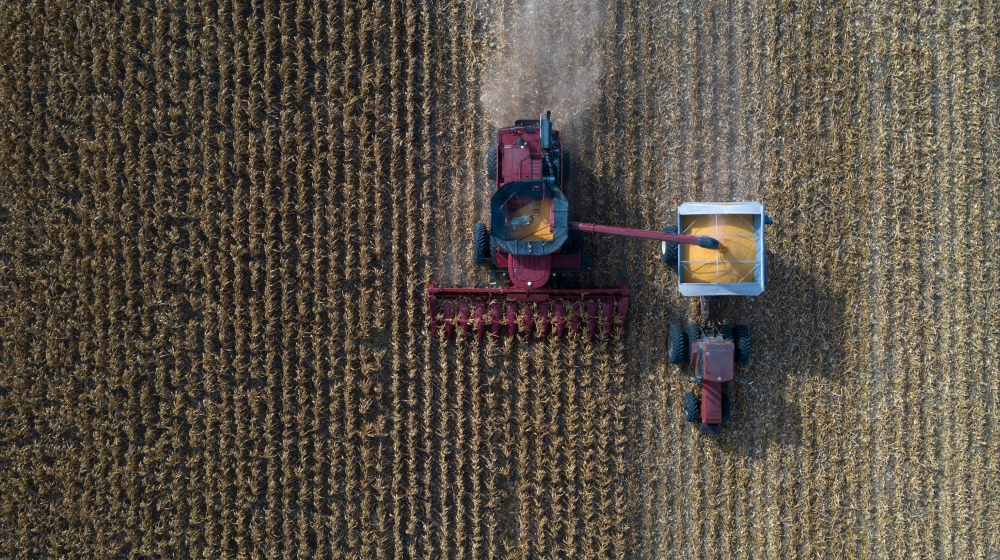 Grain farmers harvest corn amid the coronavirus disease (COVID-19) pandemic in Marion, Texas, U.S., July 17, 2020. REUTERS/Adrees Latif