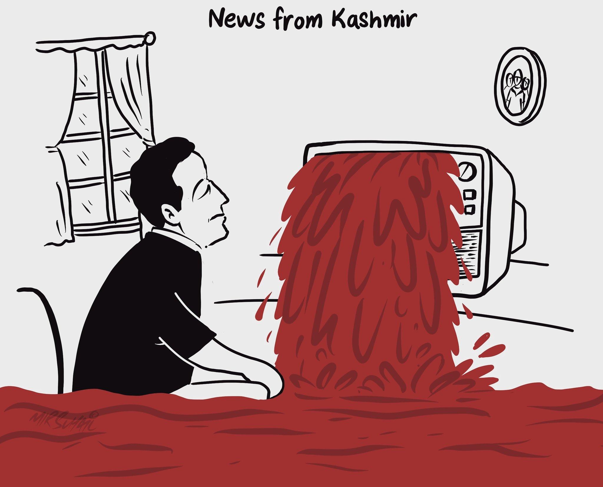 Kashmir story Mir Suhail