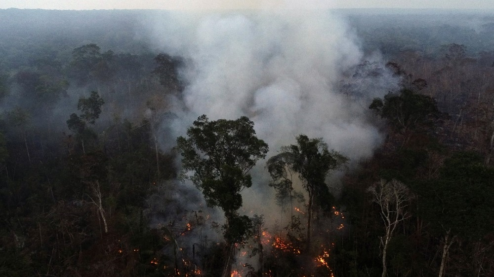 Brazil Amazon rainforest wildfires
