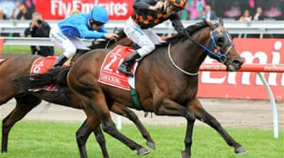 Shocking wins Melbourne Cup