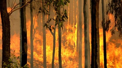 Australia to probe cause of fires