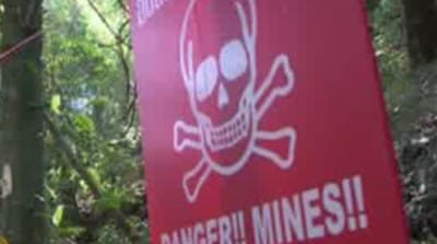 Video: Thai landmine danger