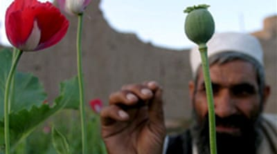 Video: US to change opium strategy
