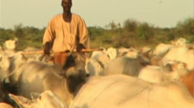 Sudan's Arab nomads fear for future