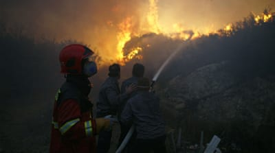 Israel battles deadly forest fire