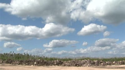Cancun mangroves under threat