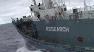 Japan indicts anti-whaling activist