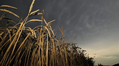 Disasters could push food prices up