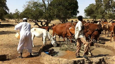 Nowhere to turn for Sudan herders