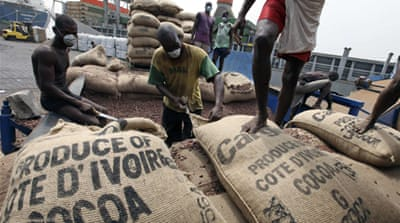 Ivorian cocoa prices spike