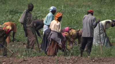Lack of investment worsens food crisis