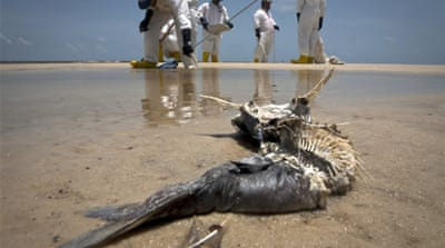 In Pictures: Gulf seafood industry struggling