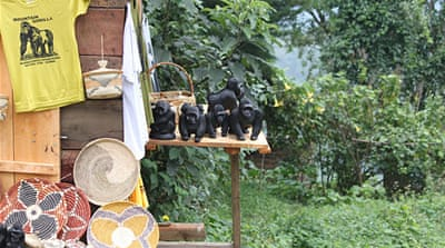 Mountain Gorillas in Uganda & the Great Seed Bank