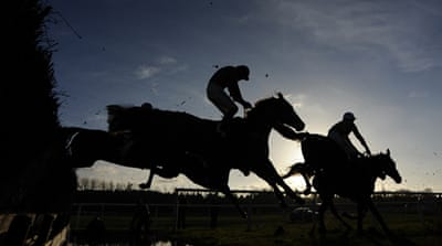 Mystery as horses die before race