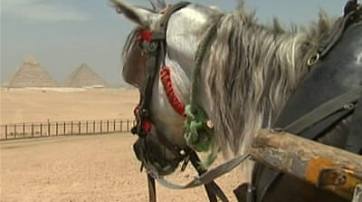 Revolution hits Egypt tourism