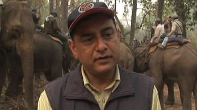 Nepal counts endangered rhinos