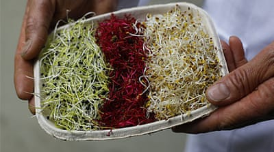Bean sprouts likely source of E. coli crisis