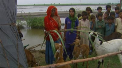 Pakistan and UN ask for $350m in flood aid