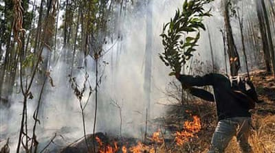Bolivia wildfires expected to break records