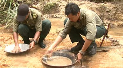 Gold rush ravages Malaysian forest
