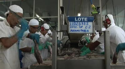 China imports 'sinking' Brazil fishing sector