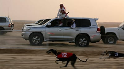 In Pictures: Qatar's hunting games