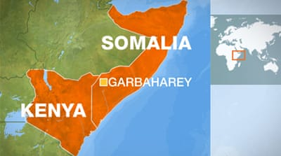 'Al-Shabab men killed' in Kenyan air raid