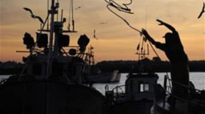 Greenpeace has advocated for a change in EU fishing policies to end subsidies and over fishing [EPA]