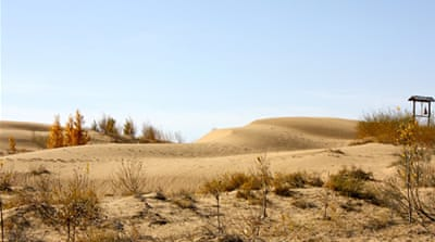 Fighting desertification in China