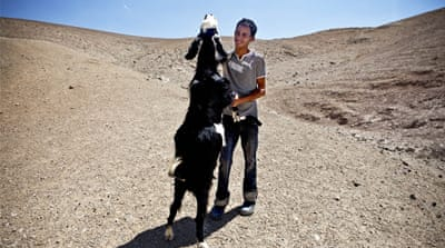 In Pictures: West Bank Bedouins