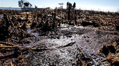 The BP oil spill: Two years on