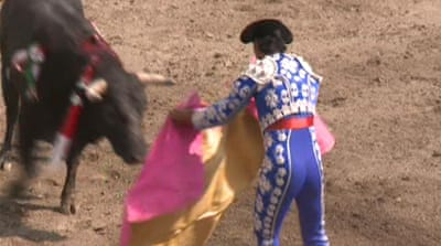 Mexico divided over bullfighting ban